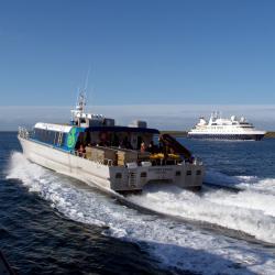 Stewart Island catamaran