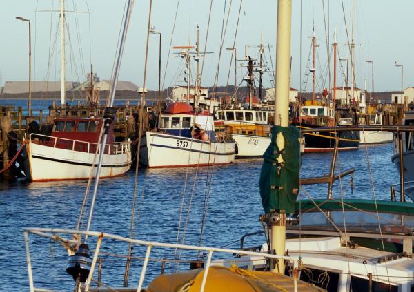 Bluff Fishermans Wharf